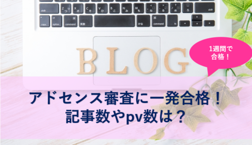 ブログ開設から1週間でアドセンス審査に一発合格!記事数やpv数は?