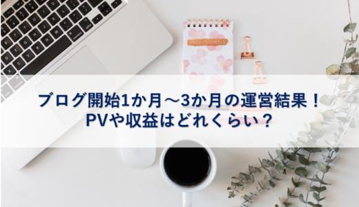 ブログ開始1か月~3か月の運営結果!PVや収益はどれくらい?